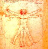 corpo-umano