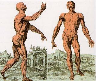 postura-benessere